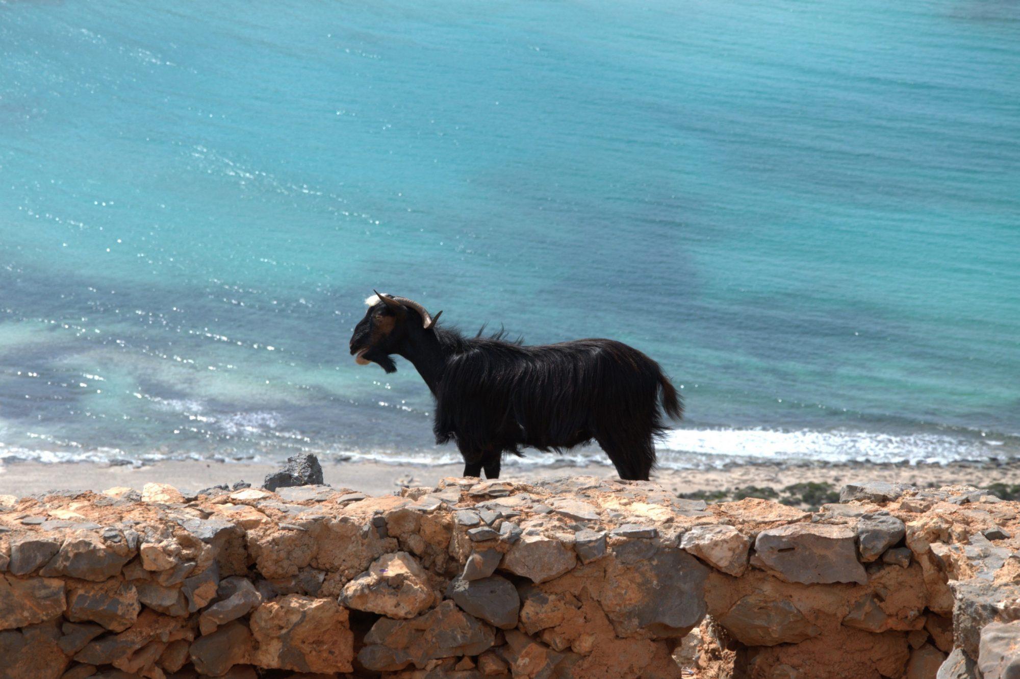 Путешествия / Греция / Крит / Балос