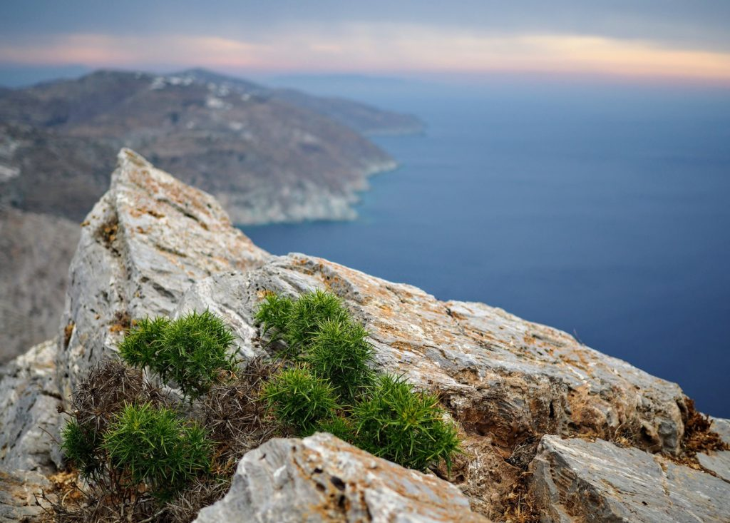 Путешествия / Греция / лайфхаки