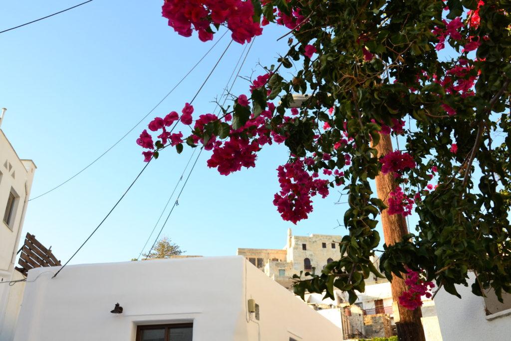 Остров Наксос. Хора - жемчужина Киклад 25