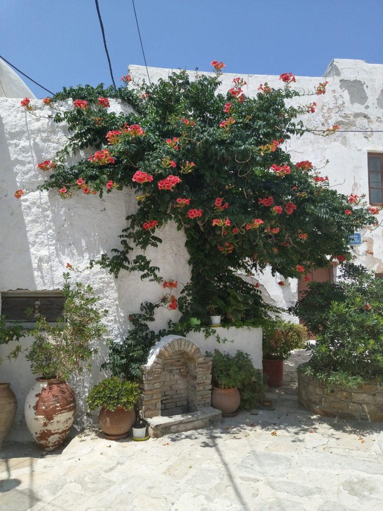 Остров Наксос. Хора - жемчужина Киклад 31